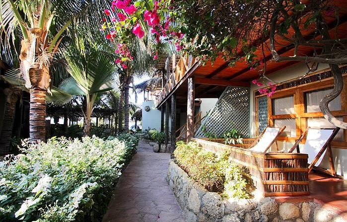 le-jardin-de-l-hotel