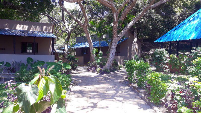 Les bungalows pour 2 à 4 personnes