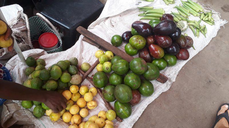 marché kite trip au Mozambique